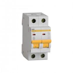 Автоматический выключатель ВА 47-29 2Р 1А - 63А 4,5кА х-ка В ИЭК